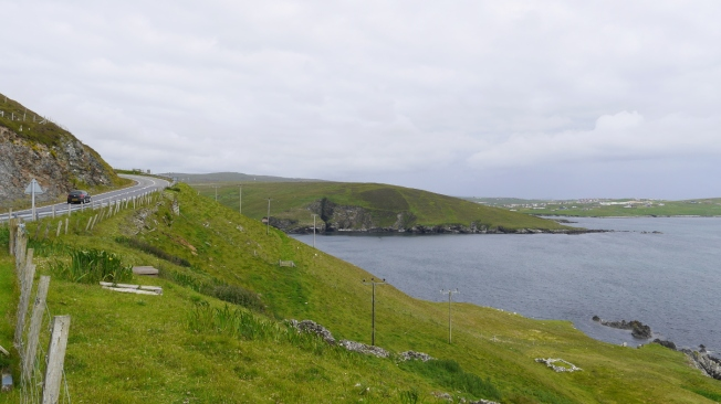 37.Shetlands