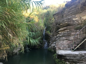 The falls, Adonis Baths