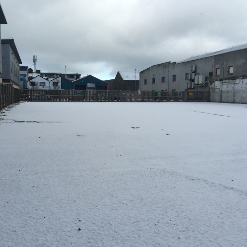 #44-finally snow-2